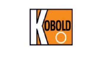 Kobold DPL Rotating Vane Flow Meter