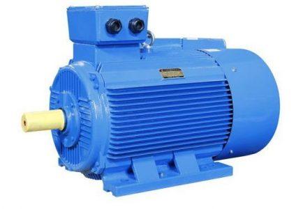 Paragon PEM Series Electric Motor
