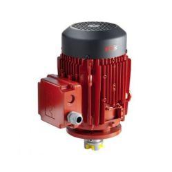Flux Three-Phase Motor DSM