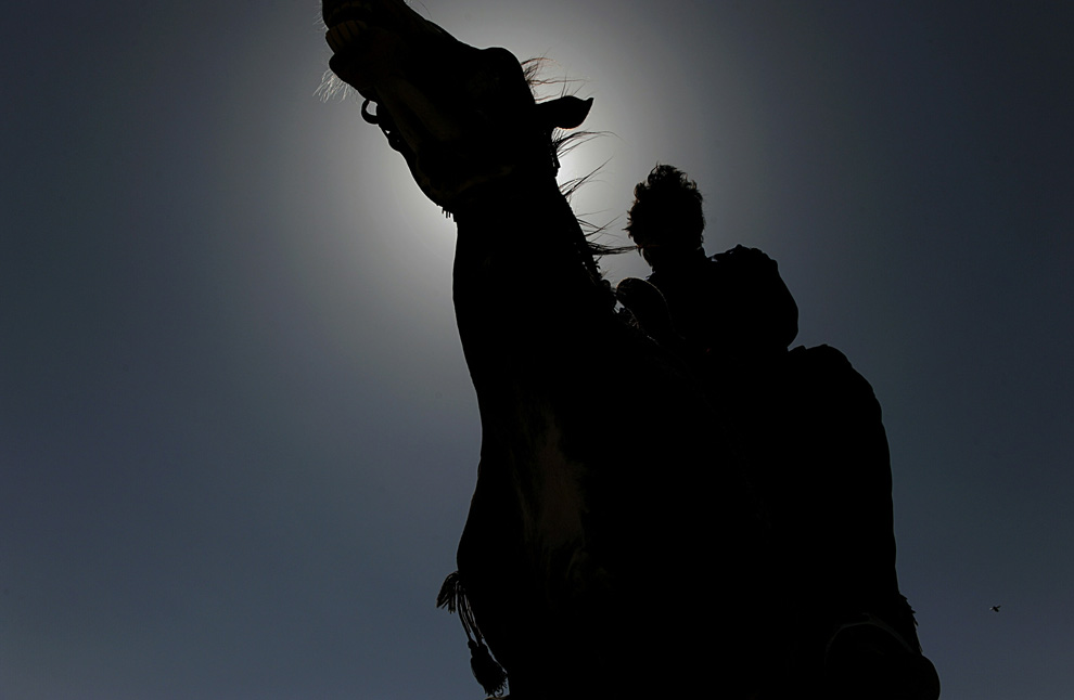 silhouetted horseman