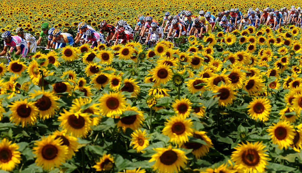 The peloton near Vatan, France, via The Big Picture