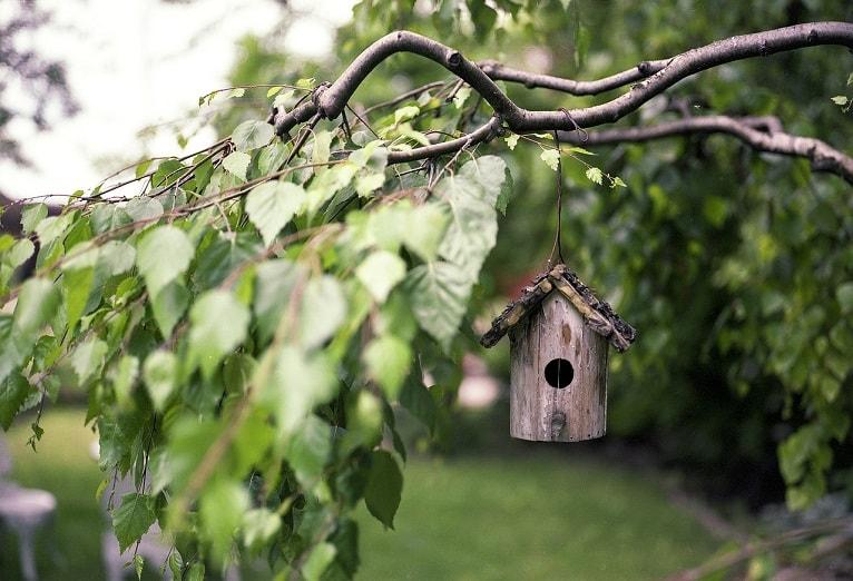 casa-saludable-medioambiente