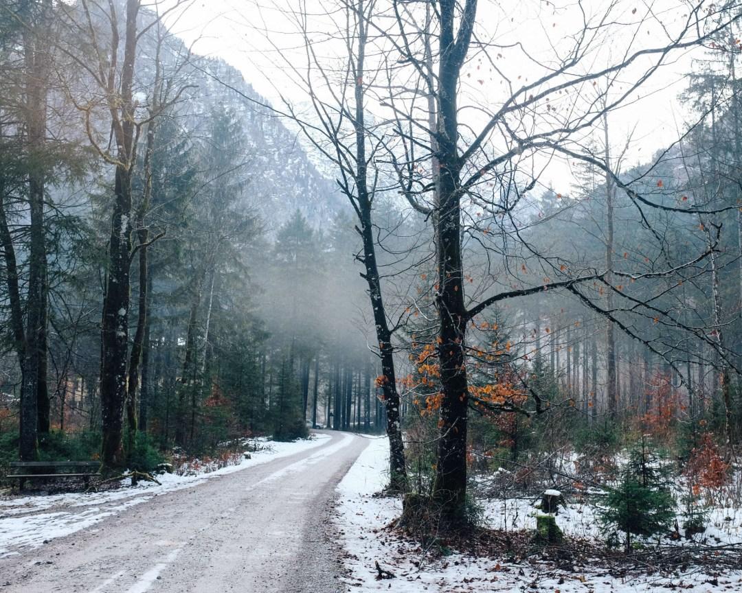 ina stil inastil bluntautal winterstimmung decoration weihnachten salzburgerland winterspaziergang homedecoration winterwalkDSCF0618