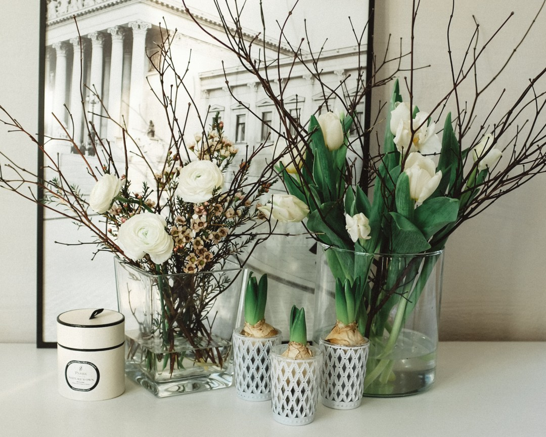 inastil, blumen, frühlingsblumen, weiße Tulpen, Tulips, Wachsblume, Ranunkeln, Blumendekoration, Flowerdecoration, Homedecoration, whiteflowers-7