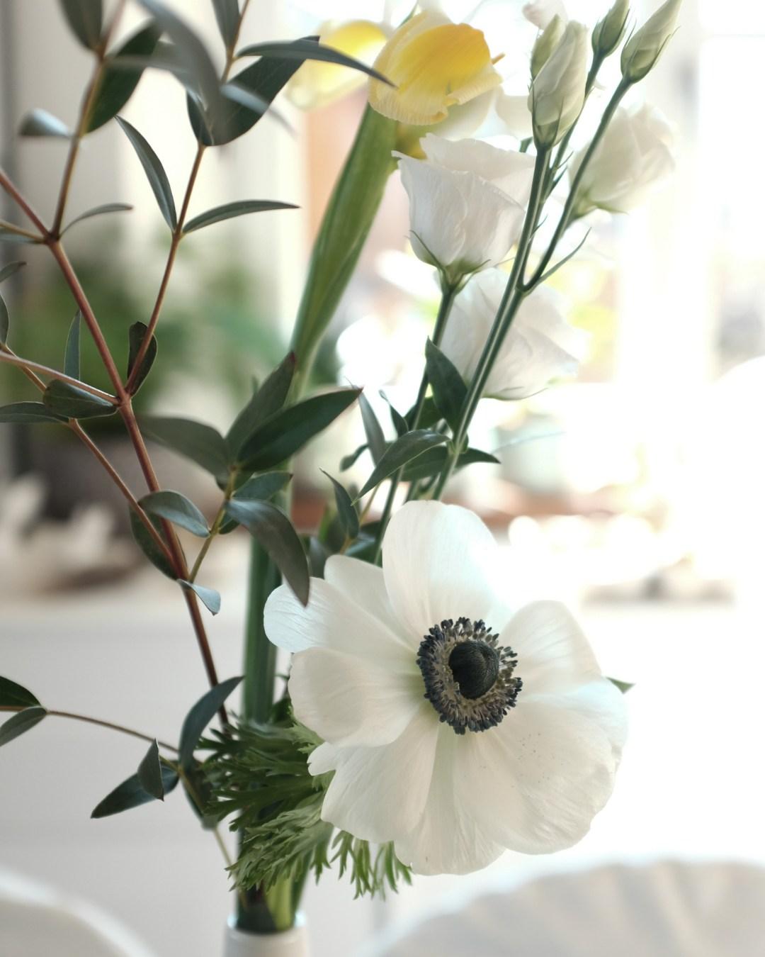 inastil, Ostertisch, Osterkaffee, Osterbrunch, Brioche, Briochehasen, Mangotörtchen, Weiße Schokomoussetörtchen, Osterrezept, Blumendekoration, Rezeptidee für Ostern-17
