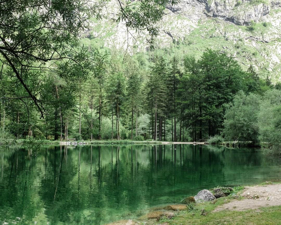 inastil, Bluntautal,Salzburgerland,Tennengau Landschaft. Landscape Sommermenue Gurken Avocado Suppe gedeckter Tisch,Tablesetting Nachspeise Ingwerzitronenschaum Dessert-4
