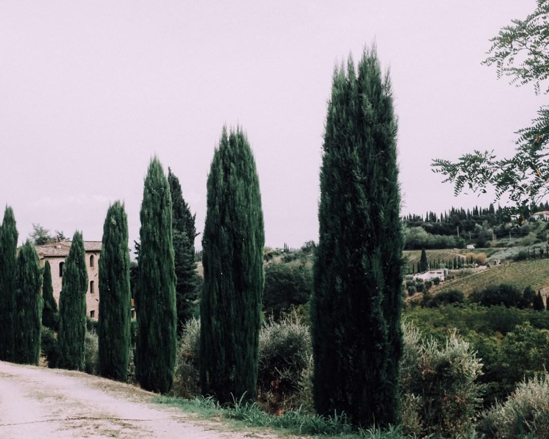 inastil, Ü50Blogger, Reiseblogger, Toskana, Villa, Florenz, Siena, Certaldo, Lifestyle, Italienreise, Italienliebe, Cabriotour-24