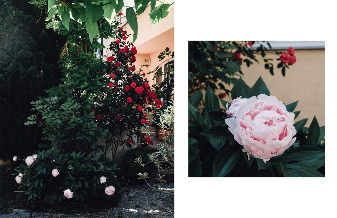 rosen194