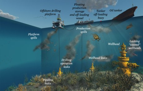 Photo: Infographic by Oceana.org
