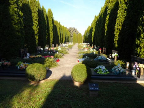 Vukovar Cemetery 19 November 2016 Photo: Connor Vlakancic