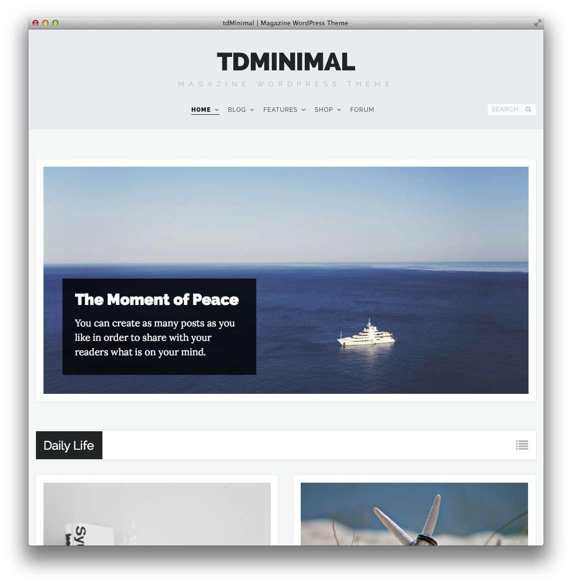 минималистские темы WordPress для бизнеса и блогов8