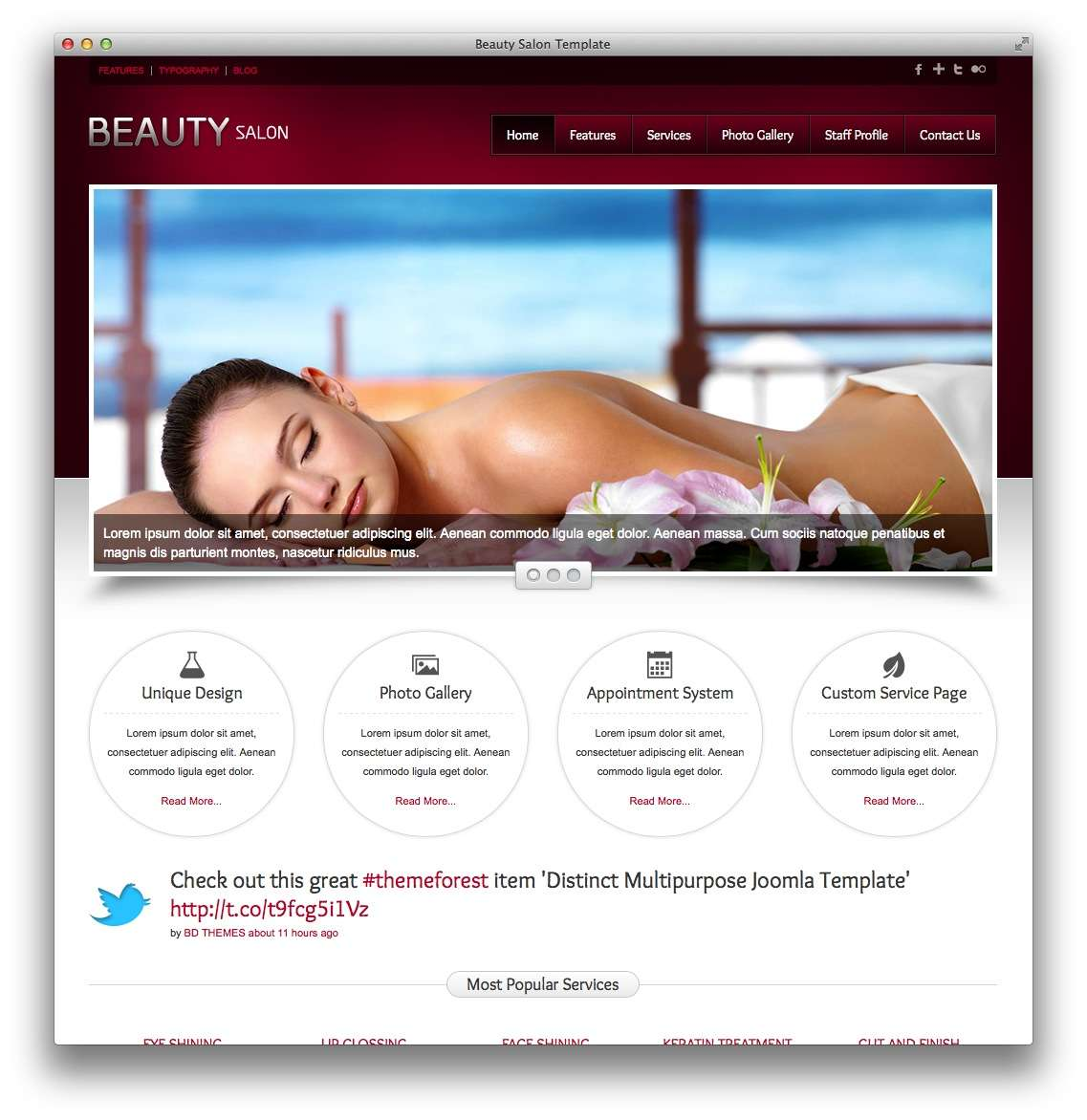 WordPress для салона красоты10