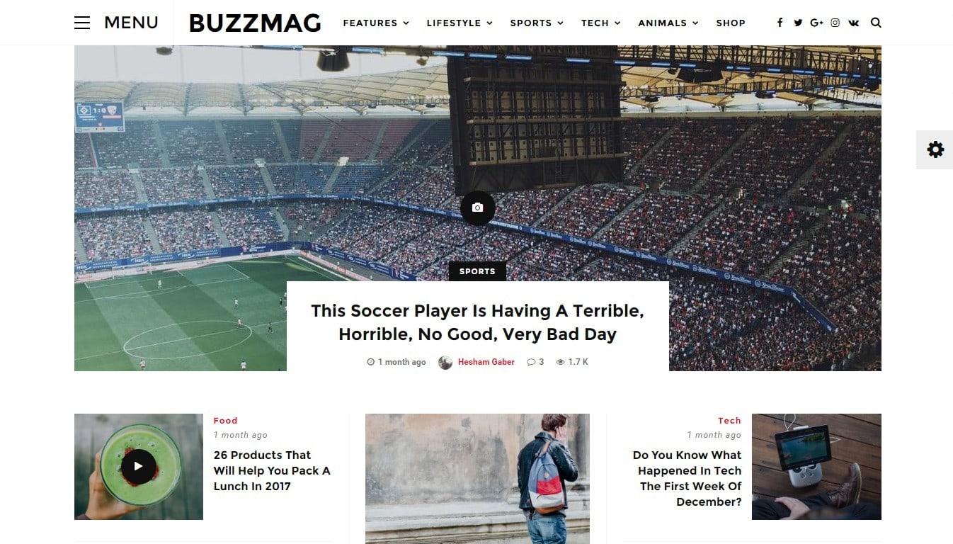 адаптивные WP темы для интернет-магазина, бизнеса и журнала 09