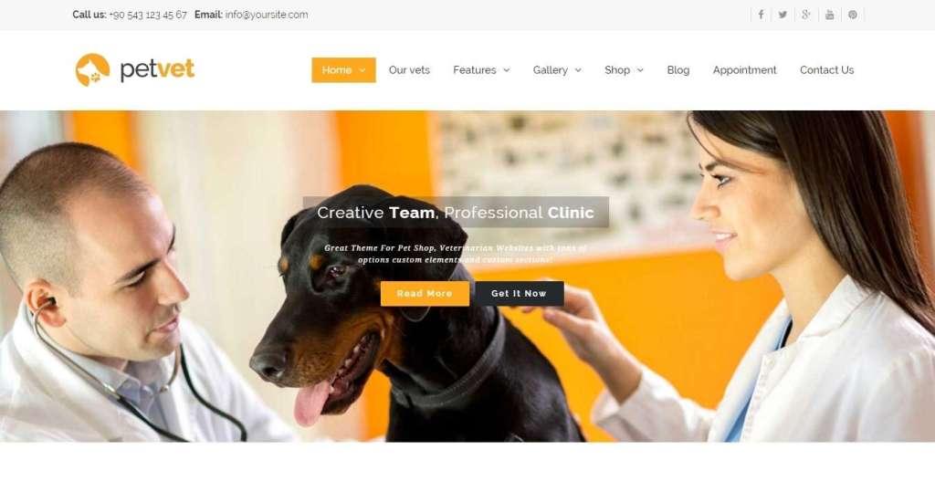 готовый шаблон сайта ветеринарной клиники 2016