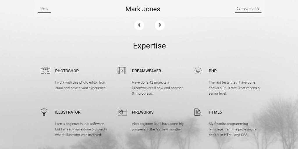 эксклюзивный шаблон сайта визитки WordPress 2016