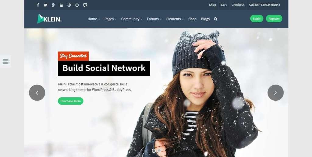 красивые шаблоны социальной сети WordPress 2017