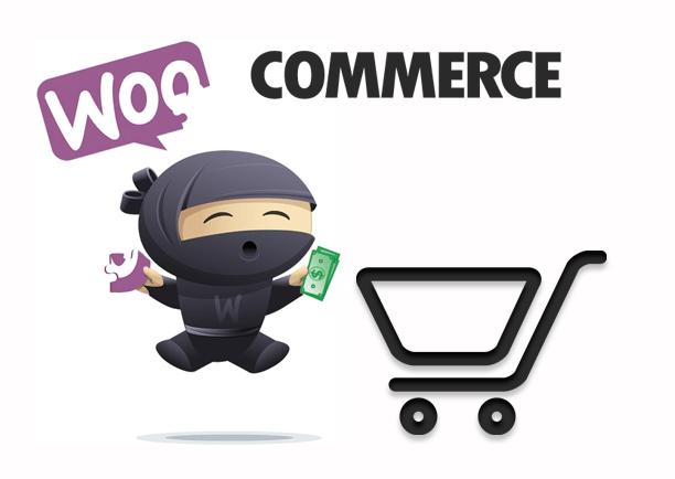 WooCommerce купоны и подарочные карты – Повысьте свои продажи 2