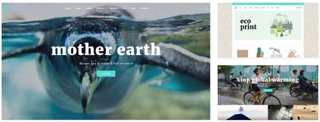 сайт экологической организации на WordPress с функцией сбора средств 05