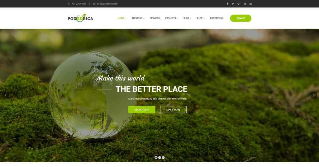 сайт экологической организации на WordPress с функцией сбора средств 06