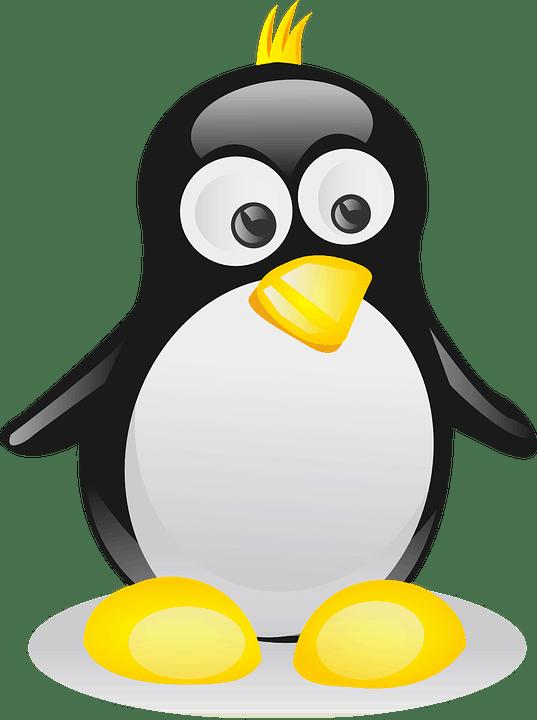 курсы Linux онлайн: от работы с командной строкой до системного администрирования 01