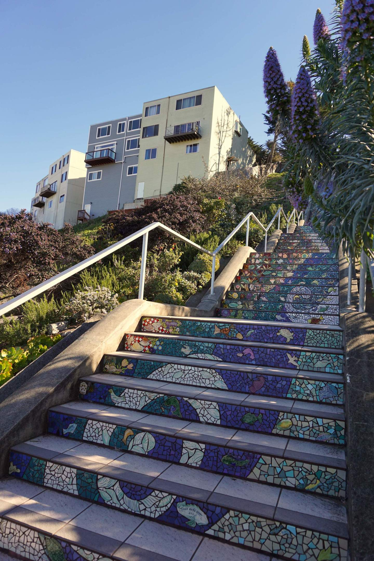16th Avenue Tiled Steps – San Francisco – IN BETWEEN LATTES BLOG 2