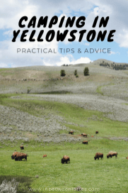 CAMPING IN YELLOWSTONE, PRACTICAL TIPS & ADVICE_ IN BETWEEN LATTES