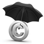Intellectual Property: Protecting a Core Business Asset
