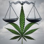 Medical Marijuana: Establishing Standards
