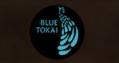 blue tokai-indian startup funding