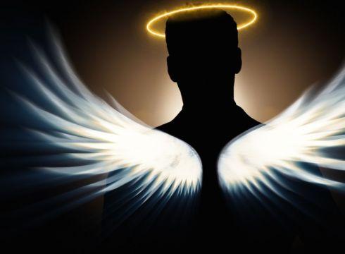 indian angel investor