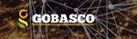 gobasco-indian startup funding