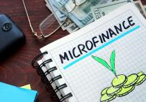 Decoding The Various Micro Finance And Money Lending Models In India