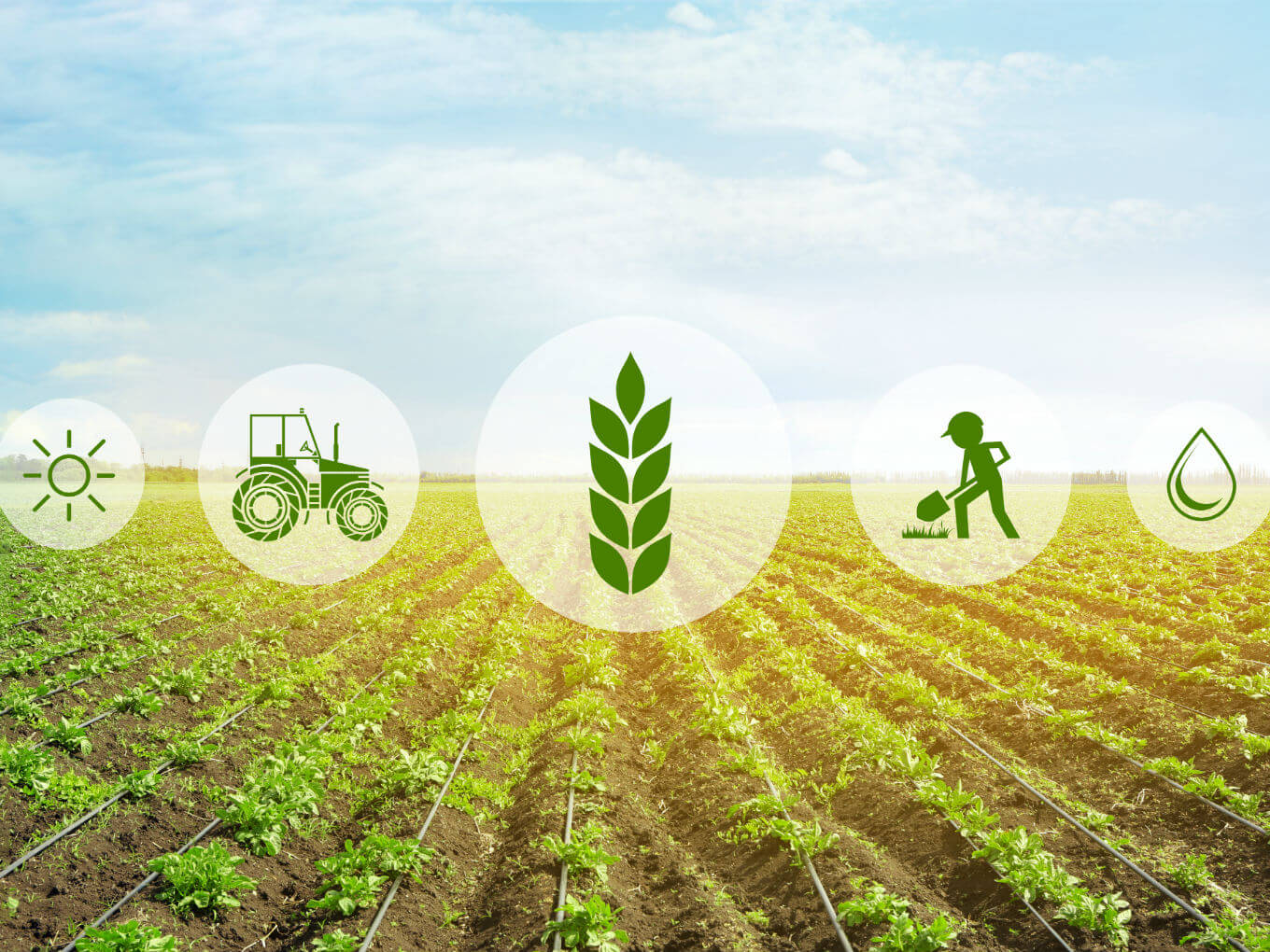 Here Are The Five Agritech Startups Joining Gastrotope's First Cohort
