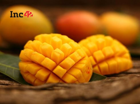 With Mango Crunch, Seasonal Supply Chain Becomes New Focus For Agritech Startups