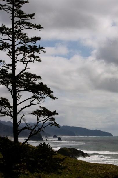 Oregon Coastline viewed from Ecola State Park.