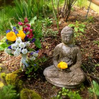 Zunday Zen ... Earth Day Every Day!