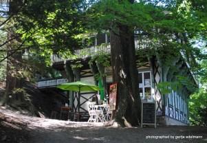Café und Walderlebniswerkstatt