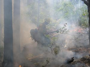 Forest Service Firefighter Alex Henderson works in the smoke on the Doe Canyon Fire.