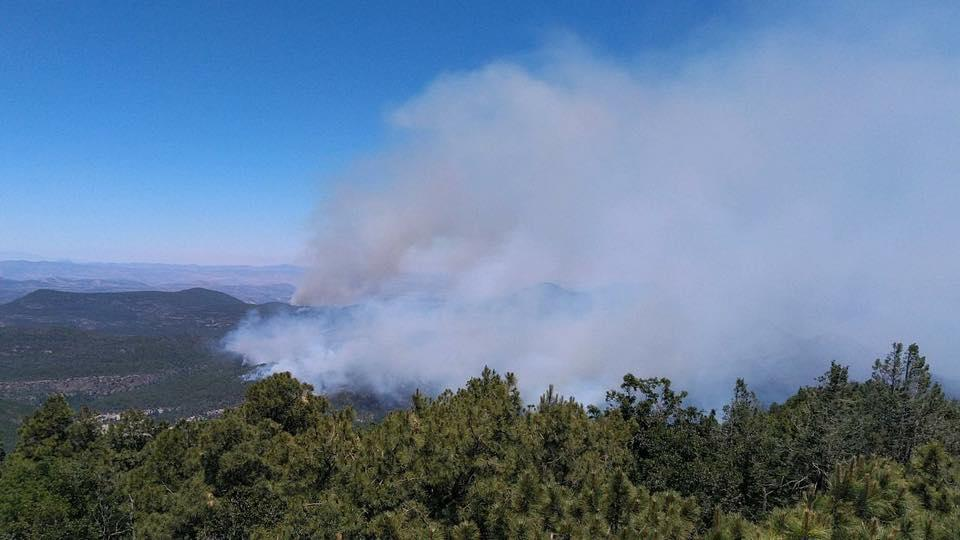 Image of Tadpole Fire 06/18/2020