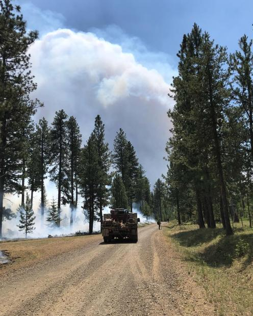 A wildland firefighting crew carrier vehicle is parked on a road while low vegetation is burned on the left side and firefighters stand on the right looking out at unburned vegeation.