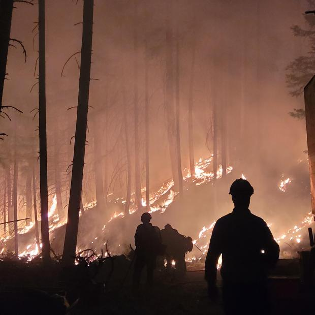 Firefighters along the fireline at night in Zulu Division