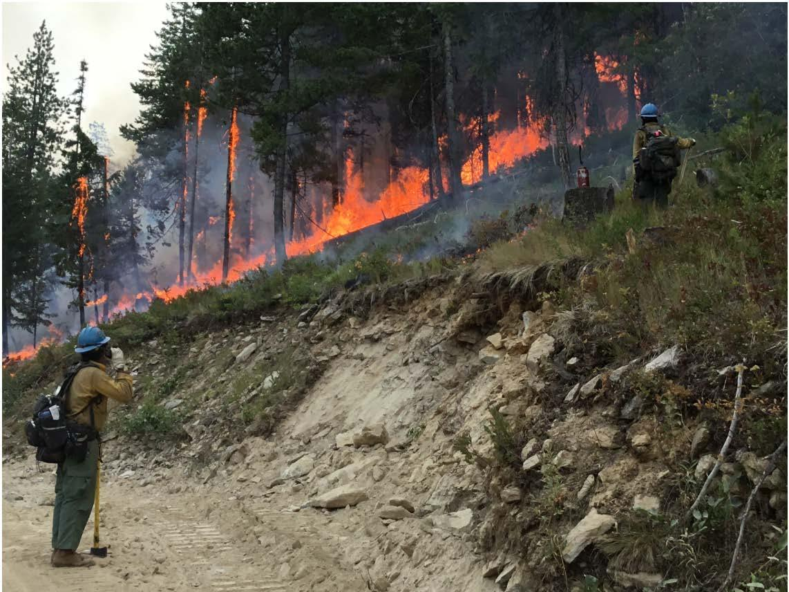 A firefighter guards a fireline.  She burns small, calculated areas to ensure that the approaching firefront hits the fireline in a slow, controlled manner.