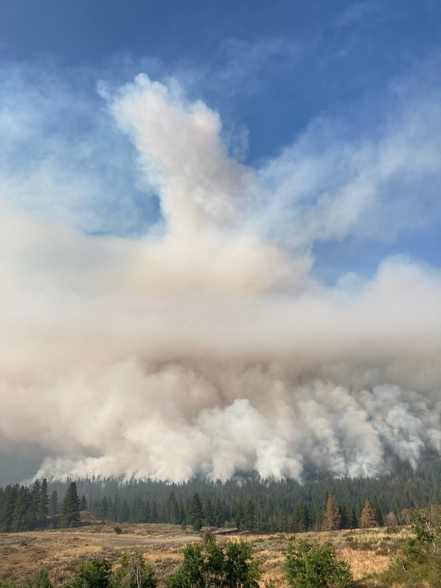Our hotshot crew just finished hand ignition along the Thompson Ridge below Gobblers Knob, from the 4410 road across the 500 road. This is to create a black line more slowly. Crews and engines are deployed along the 4410 road to hold the fire.