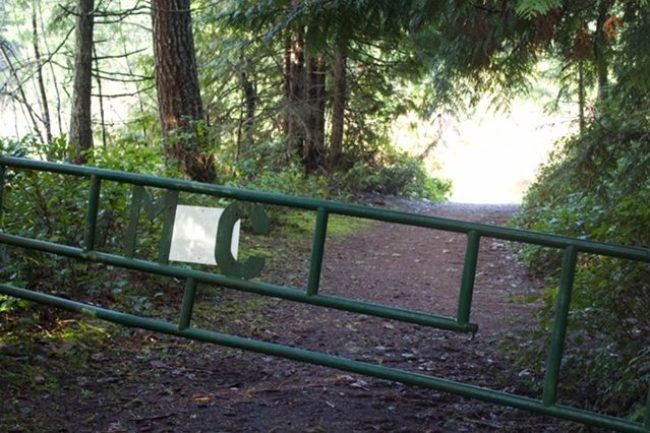 Green gate at entrance to trail