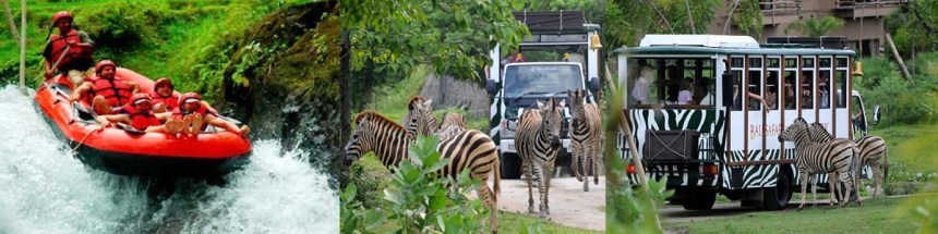 Ayung Rafting and Bali Safari Park Tour