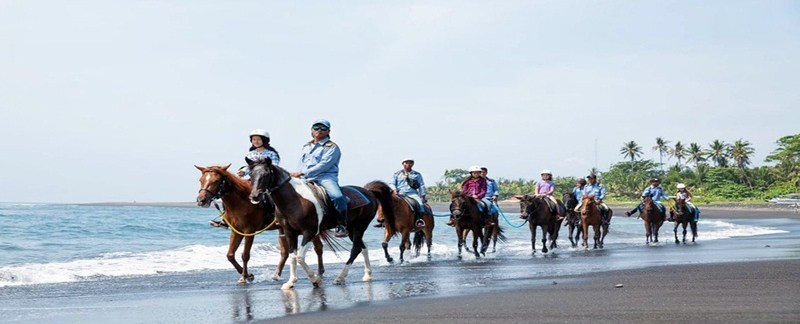 Bali Horse Riding and ATV Ride