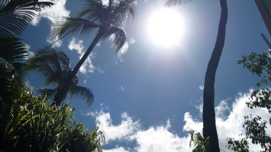 Sun at high noon in paradise