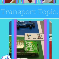 SEN Teacher: Transport Topic 1