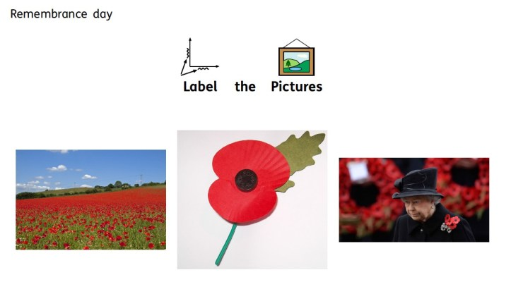 remembrance day label the pictures.jpg