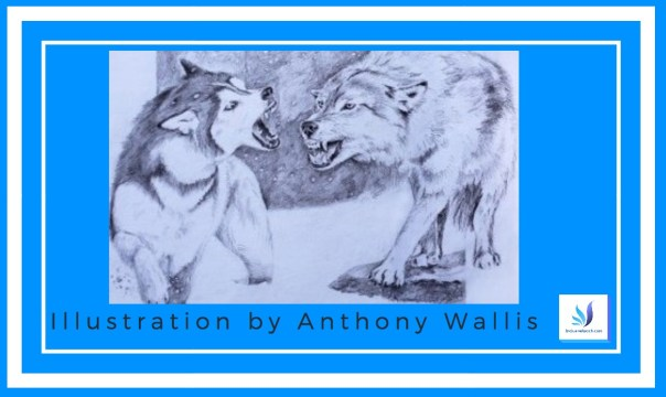 Illustration by Anthony wallis.jpg